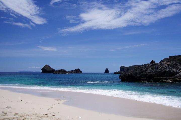 小笠原諸島の自然の画像 p1_15